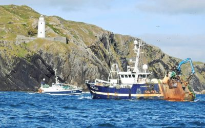 EU report projects resilience of fishing fleet during COVID-19 pandemic