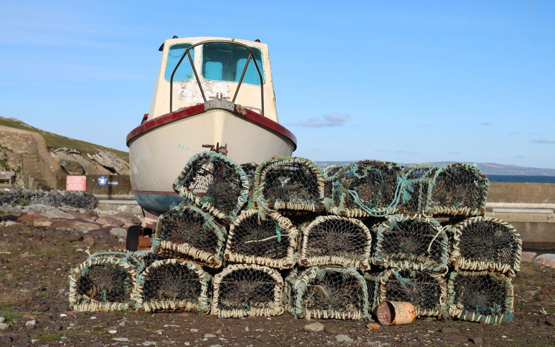 VMS trackers  for England's under-12m fishing vessels takes a step forward