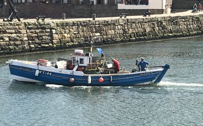 Fishermen urged to remove gear from non-UK waters ahead of Brexit