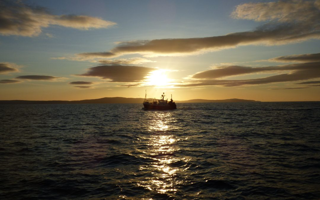 EU fishing reps welcome COVID-19 proposals 'as a first measure'
