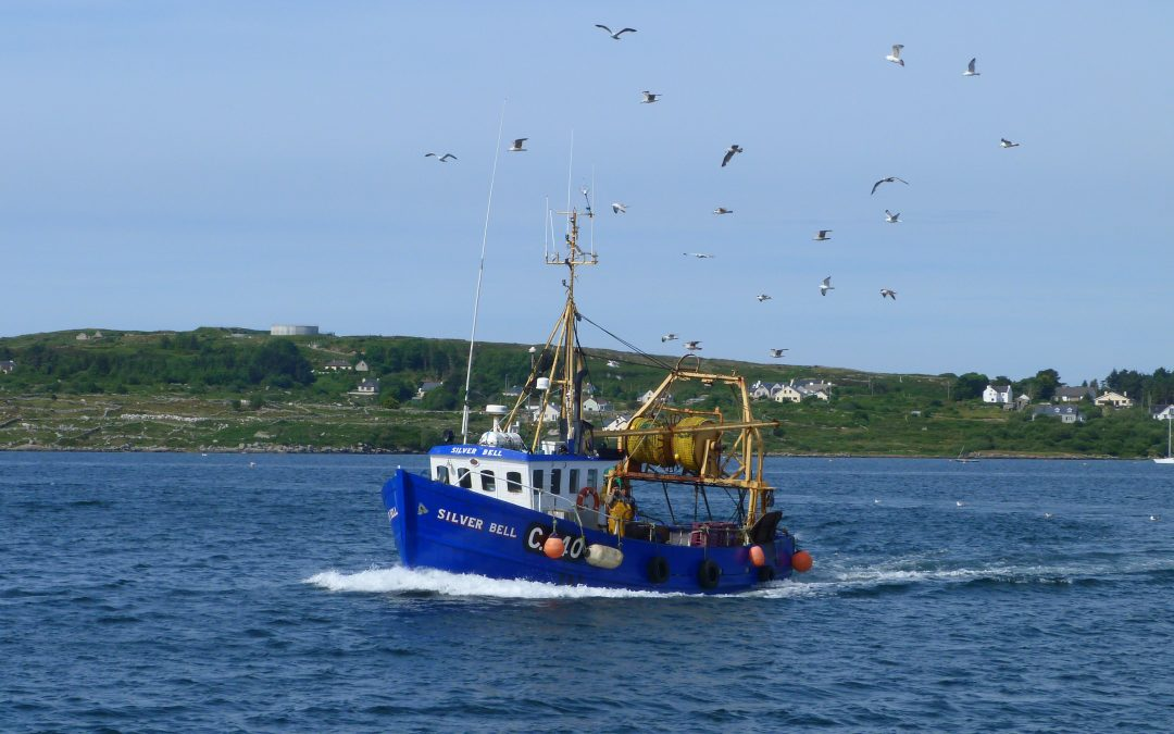 Election 2020 Fisheries Promises: Sinn Féin