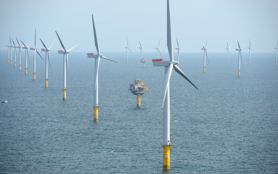 Fishermen call for a freeze on offshore wind development