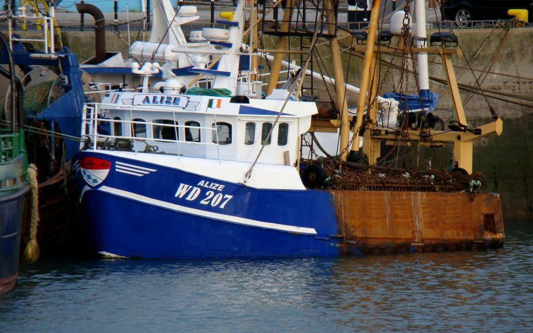 Body recovered in search for Alize skipper Willie Whelan