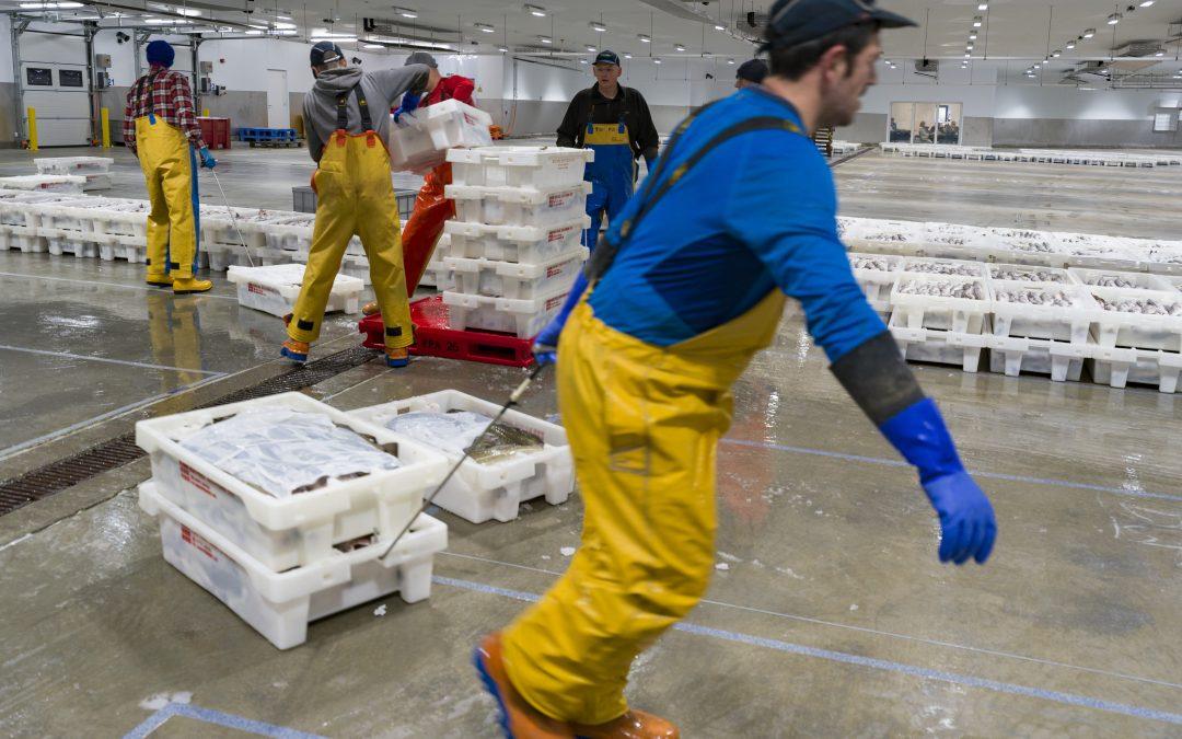 Peterhead – Europe's premier fishing port