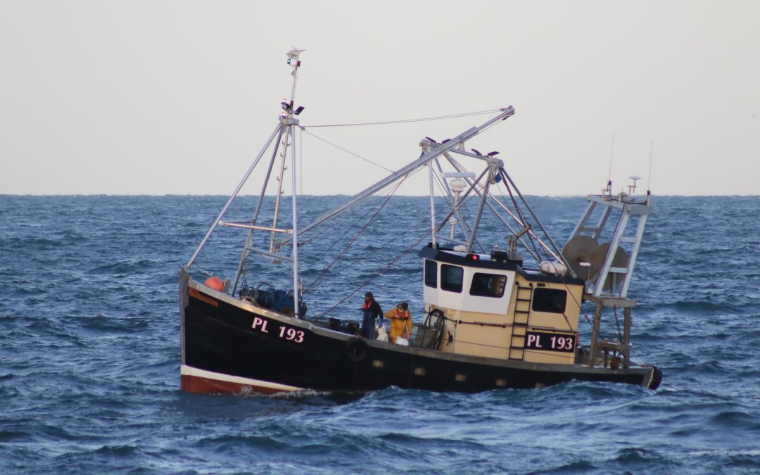 Safety expert and rescued skipper call on crews to avail of training