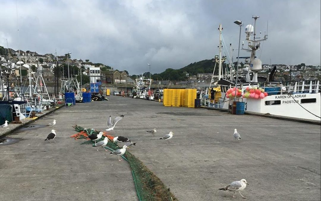 Free eye tests for fishermen in England in Wales