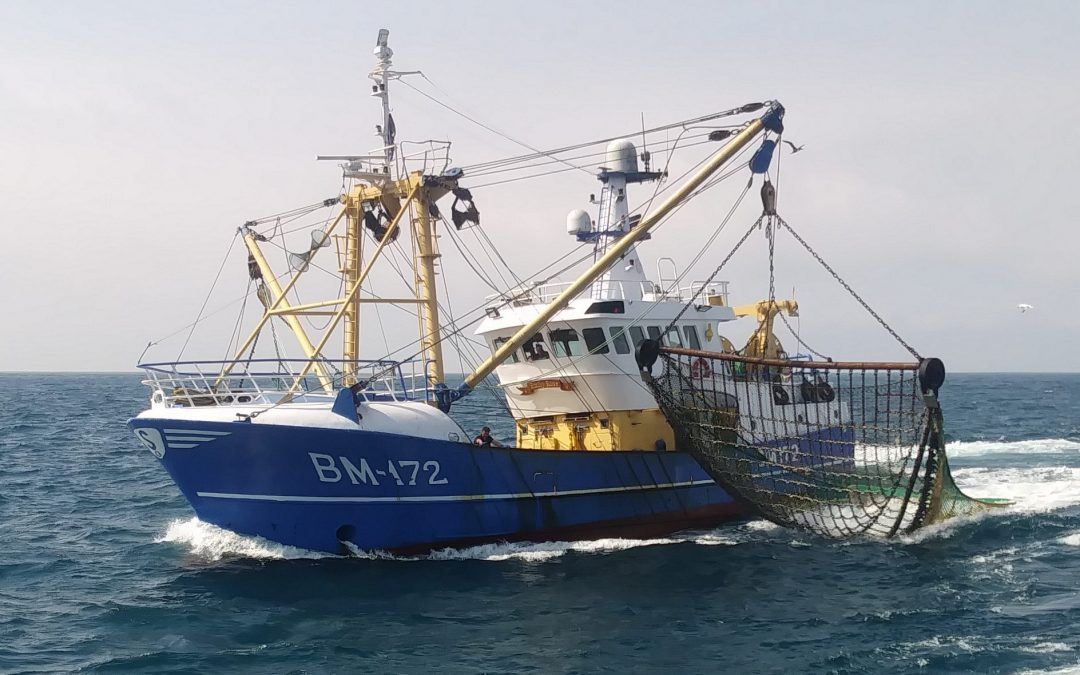Coronavirus Supports: £10m announced for English fishermen