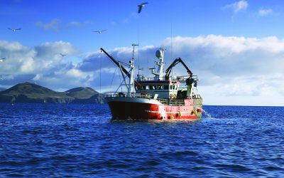 Fisheries Ministers meet Barnier & Commissioner on Brexit negotiations