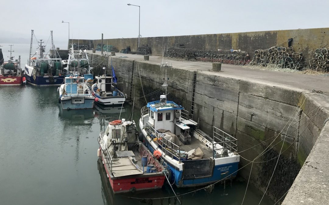 Creed announces funding for  58 Local Authority harbour projects