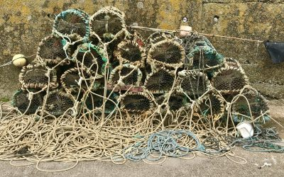 Government needs to act on urgent appeals from our fishing communities