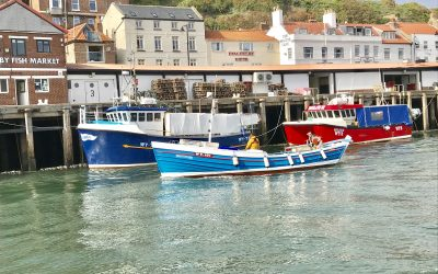 COVID-19 UK: Domestic Seafood Supply Scheme awards first grants