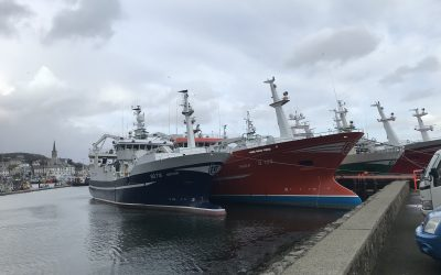 EU, Norway and Faroe Islands reach control agreement for pelagic fisheries