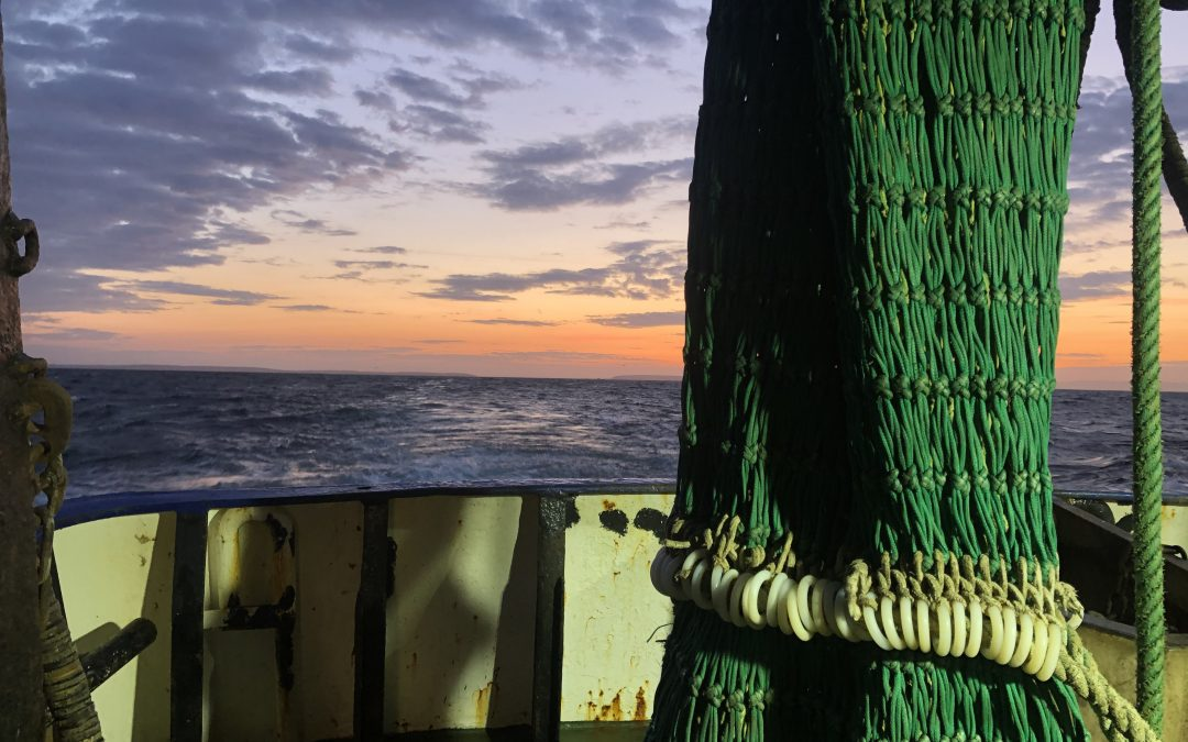 New UK Fisheries Technical Measures For Celtic Sea Areas