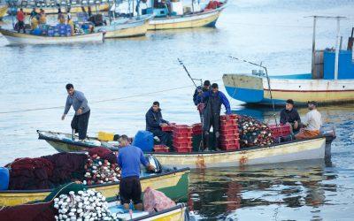 Palestinian Fisherman Injured in Israeli Naval attack