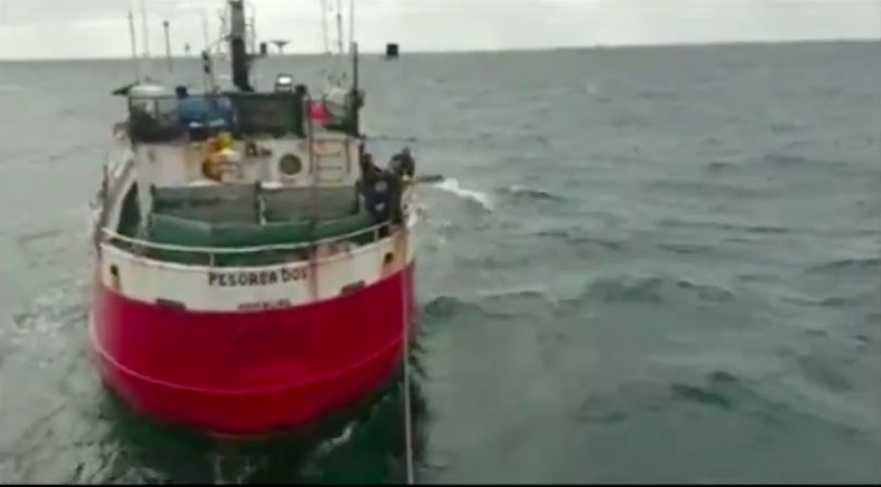 Fishermen post shocking footage of 'intolerable' behaviour