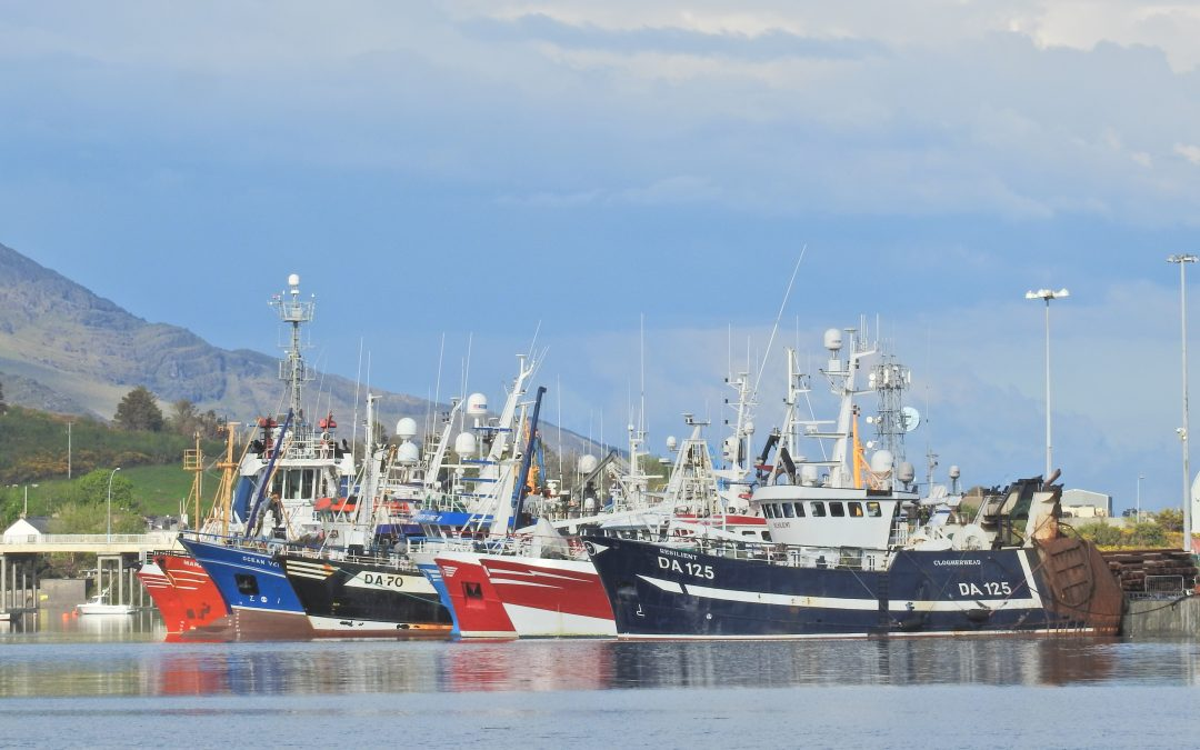 Seafood Sector Taskforce announced