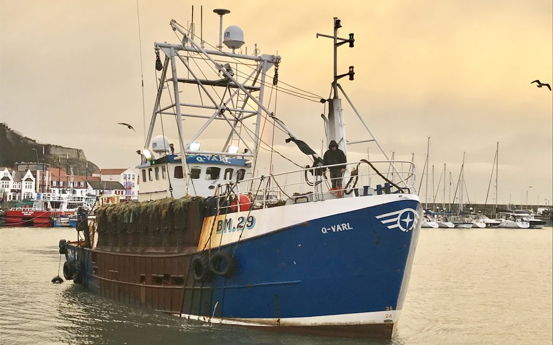 Suspension of scallop fishing in parts of the North Sea