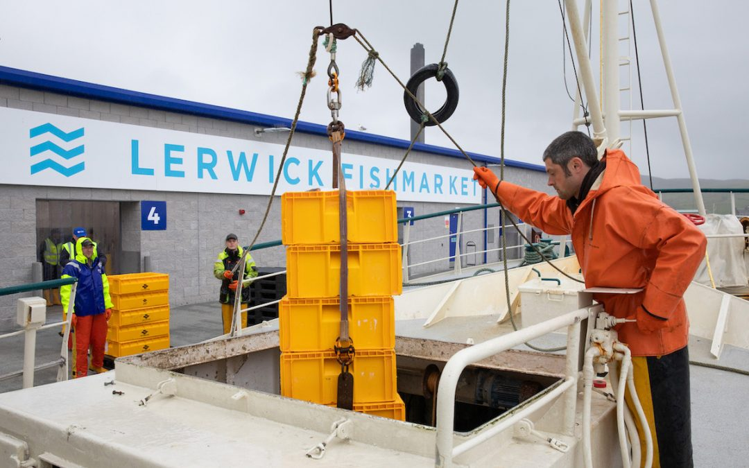 First fish landed at new state-of-the-art Lerwick fish market