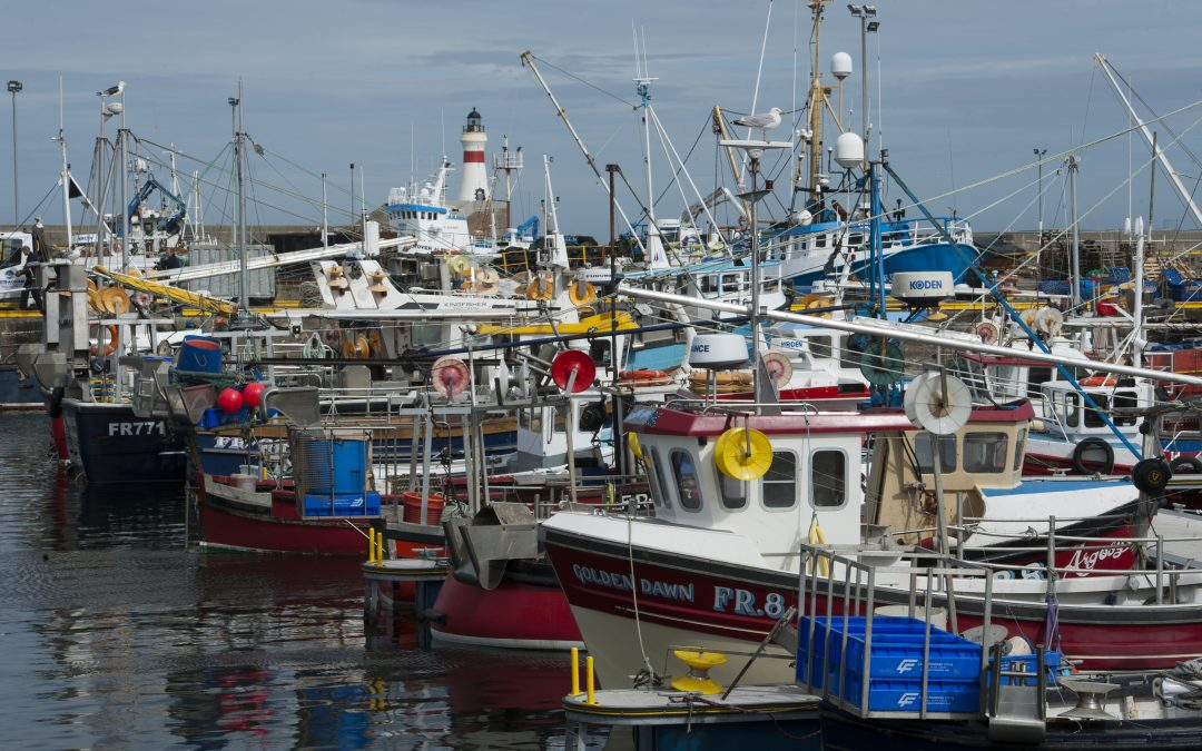 UK: Vessel owners asked to share impacts of COVID-19