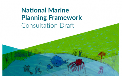 Thinking Ireland's Marine Planning Framework through a COVID-19 lens