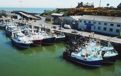 Report On Future OF Northern Ireland's Fishing Industry Published