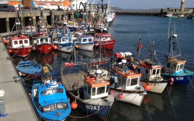 National Inshore Fisheries Forum holds meeting with Minister