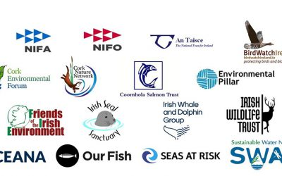 Inshore Fishermen Unite With Environmental Lobby To Support Inshore Trawling Ban