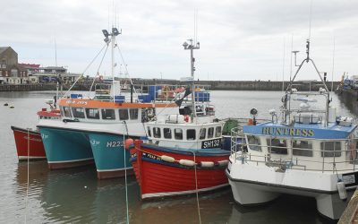 Urgent Call to UK Inshore Fishermen for Information and Evidence on Fishing Related Issues