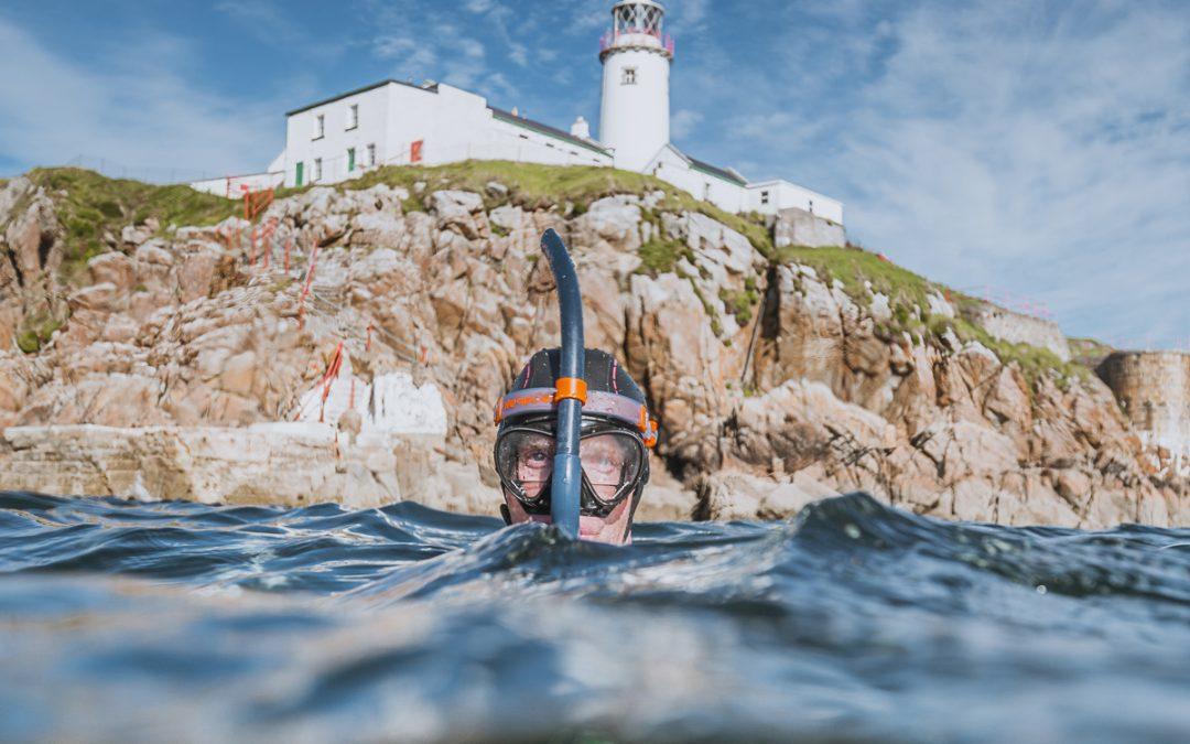 Unusual Fins Appear In Irish Waters