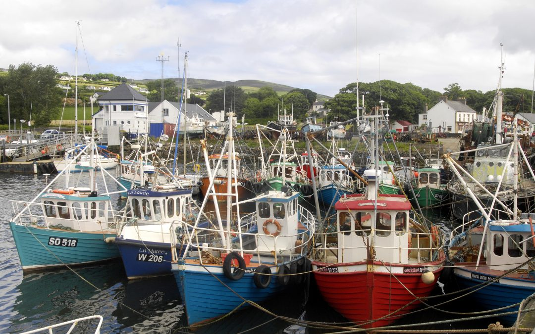 Fishermen To Research History Of Greencastle Fishing Fleet