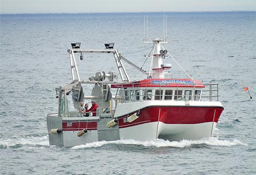 Shazleah – A Boat for all Seasons!