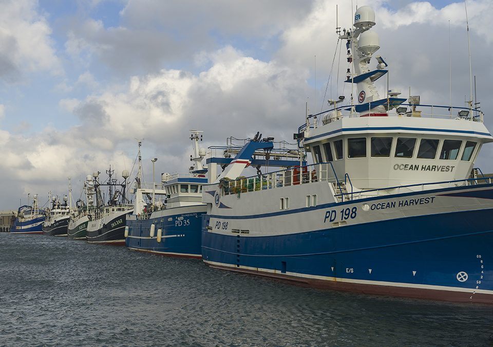 UK and EU sign agreement on catch levels for 2021