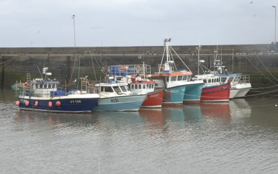 Expanded Seafood Response Fund for the UK's fishing and shellfish aquaculture sectors