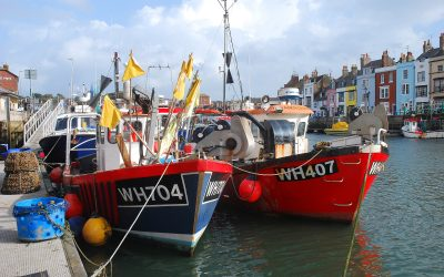 EU Exit Carnage Inflicted On The UK Fishing Industry