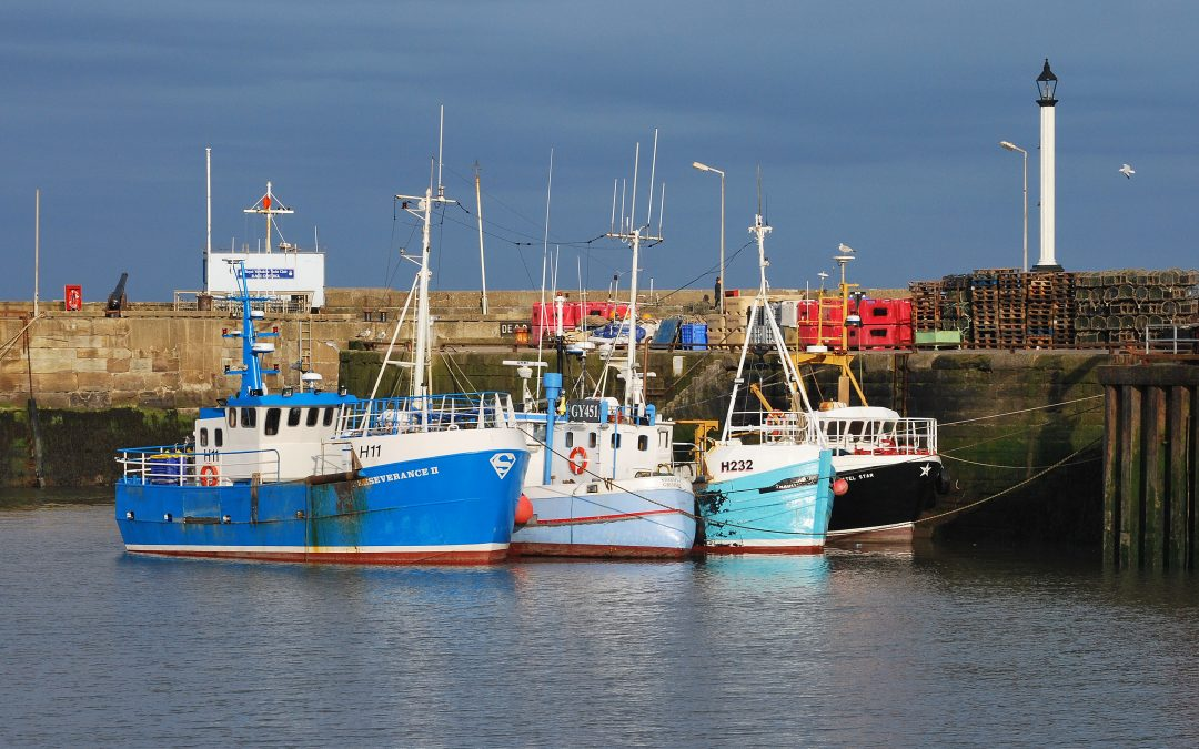 Lobster Turns The Tide For UK Fishing Port