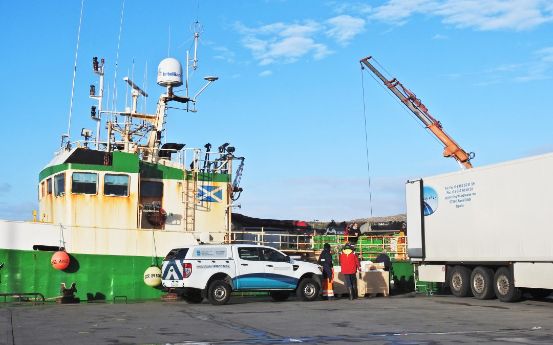 Fishing industry expresses no confidence in Sea Fisheries Protection Authority