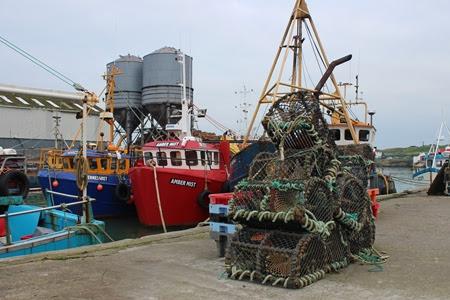 Marine Institute Trial Bycatch Avoidance App