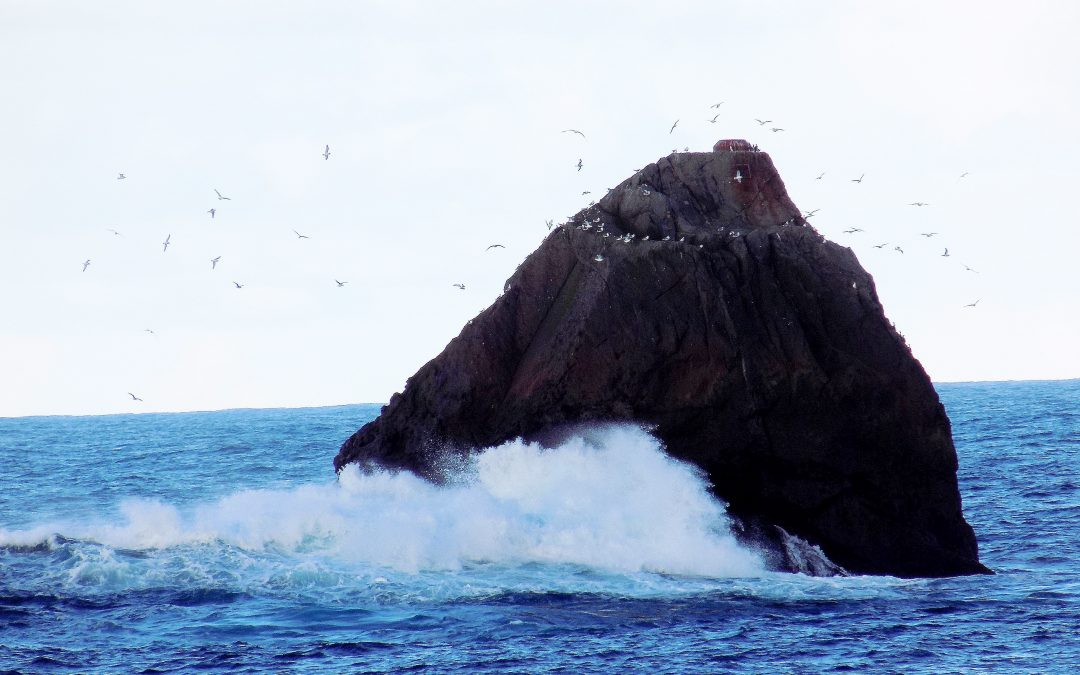 Government waving the white flag on Rockall