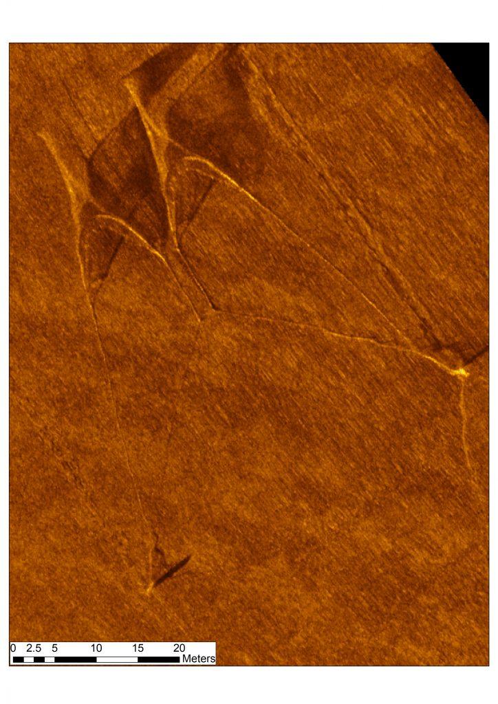 Side-scan sonar image of half-quad rig trawl with bycatch escape corridor